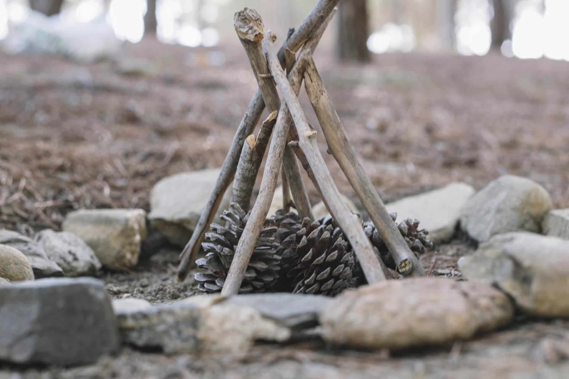 Camp Trappeur Versus Wild